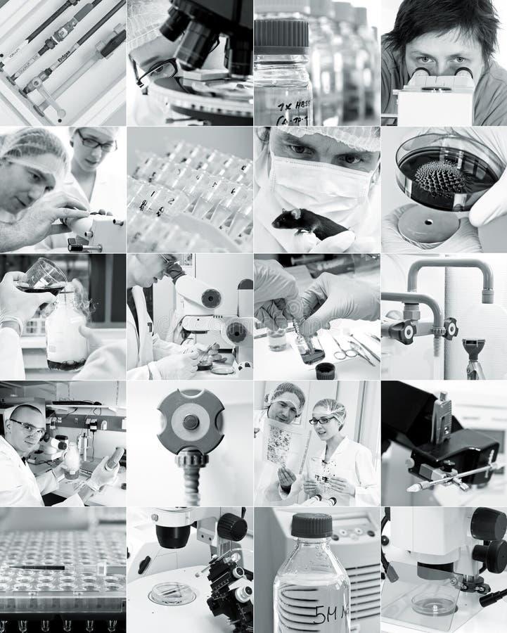 Cientistas e seus brinquedos, colagem fotografia de stock royalty free