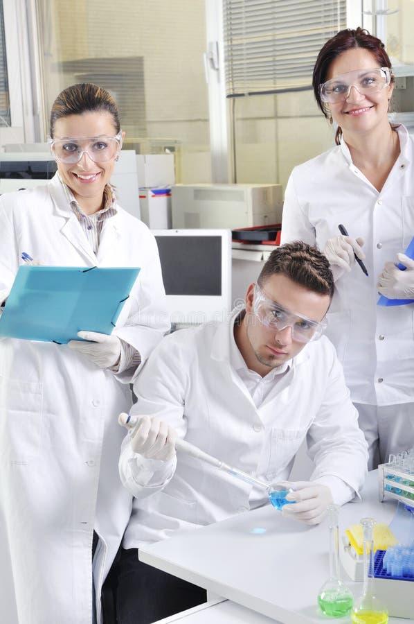 Cientistas novos atrativos dos alunos de doutorado no laboratório imagem de stock