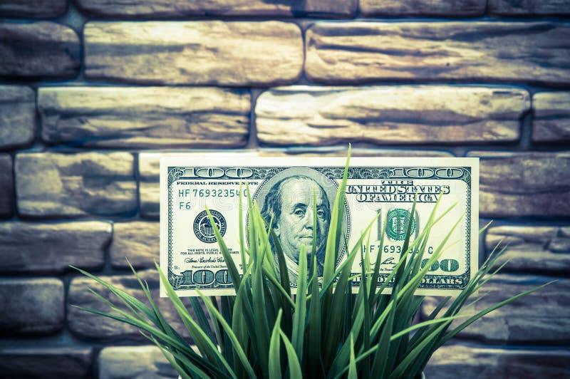 Cientos billetes de dólar en hierba en un fondo de la pared de ladrillo El concepto de protección del medio ambiente fotografía de archivo