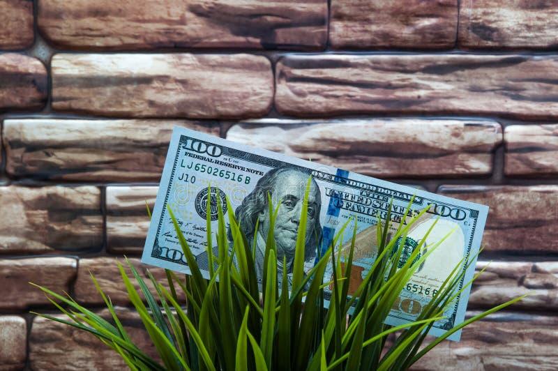 Cientos billetes de dólar en hierba en un fondo de la pared de ladrillo El concepto de protección del medio ambiente foto de archivo