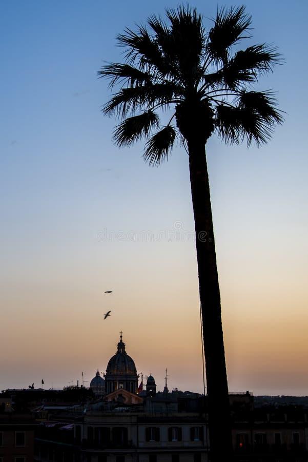 Ciepła lato zmierzchu scena z drzewkiem palmowym i monumentalną architekturą zdjęcie stock