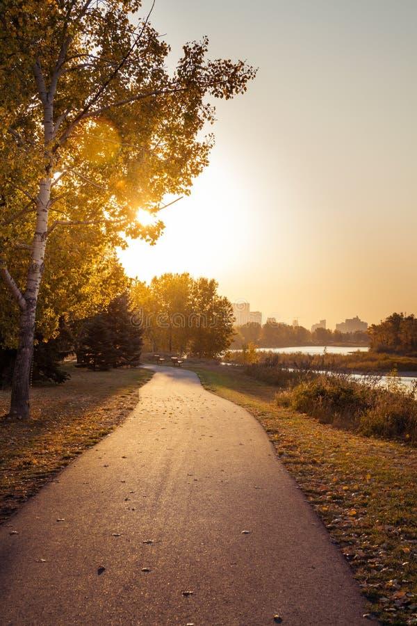 Ciepły ranku słońce na rzecznej ścieżce zdjęcia stock
