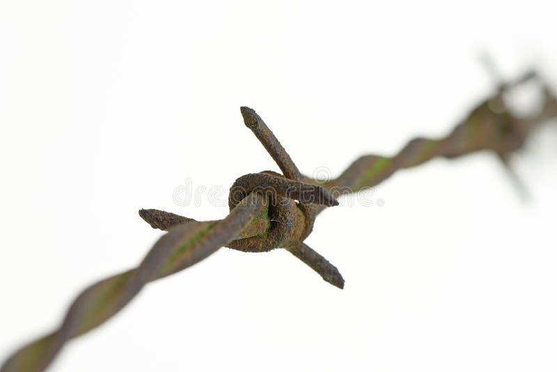 Cierre aherrumbrado de Barbwire (alambre de púas) para arriba fotografía de archivo