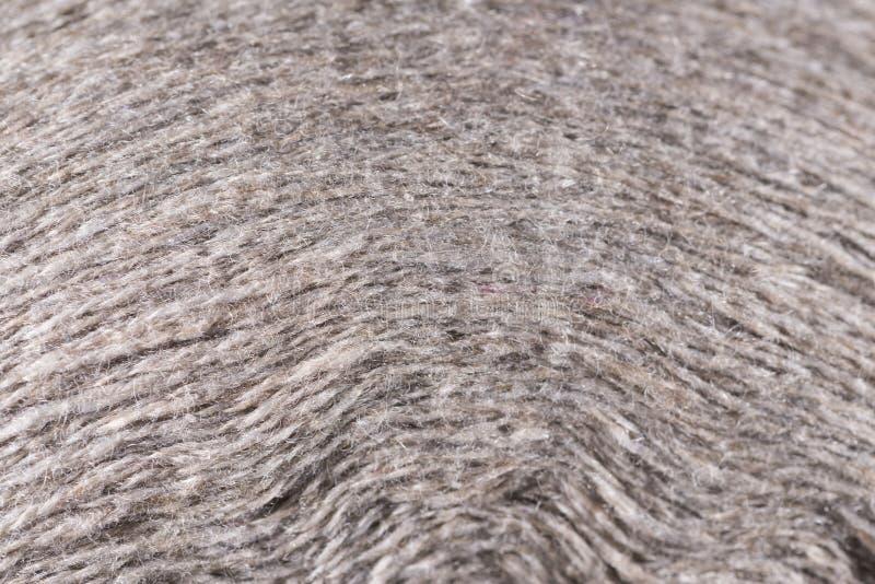 Cierre blanco de la macro del carrete del hilo de las lanas para arriba fotos de archivo