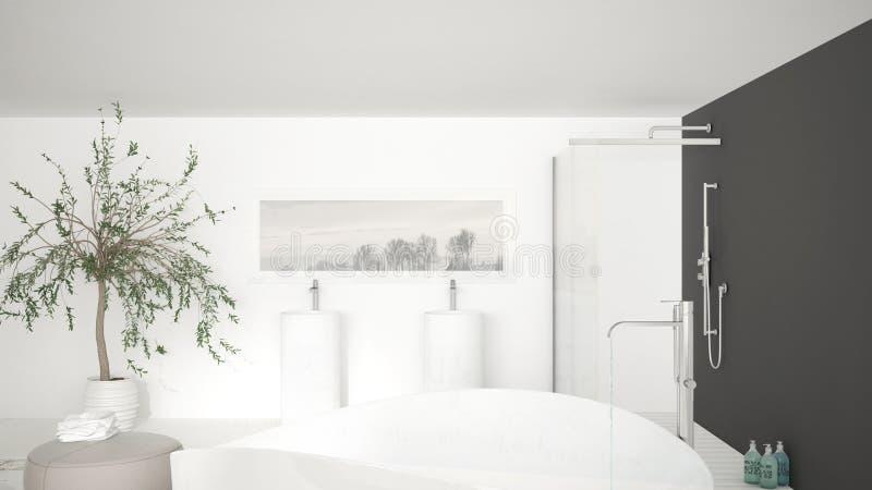 Cierre clásico moderno del cuarto de baño para arriba en la tina de baño grande, ducha grande a libre illustration