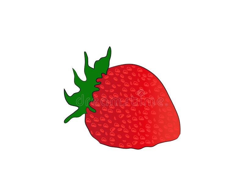 Cierre de la fruta de la fresa para arriba Fresa con las hojas aisladas en el fondo blanco Ilustración del vector ilustración del vector