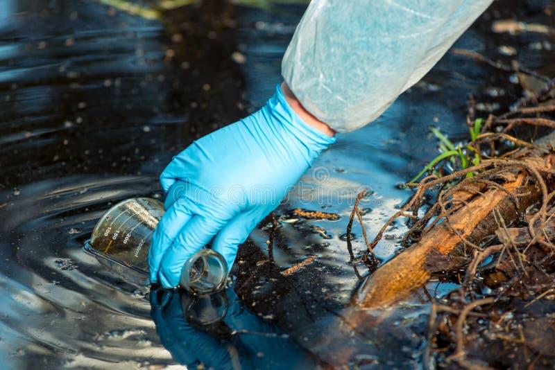 Cierre de la mano del ecologista para arriba mientras que recoge una muestra de agua de un río foto de archivo libre de regalías