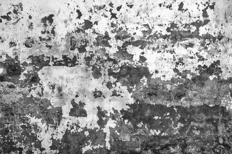 Cierre de la textura del backgroud del muro de cemento para arriba imagenes de archivo