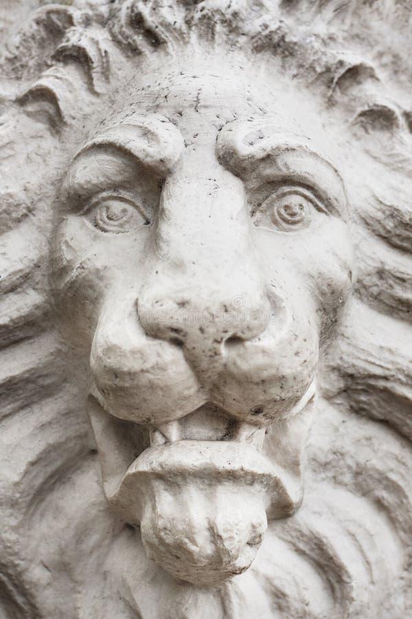 Cierre de piedra de la cara del león para arriba foto de archivo libre de regalías
