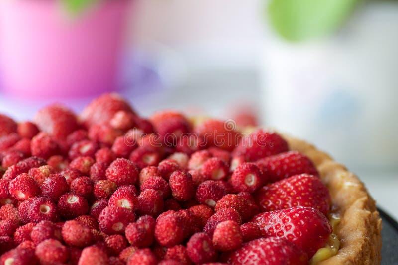 Cierre del pastel de queso de las fresas salvajes para arriba foto de archivo