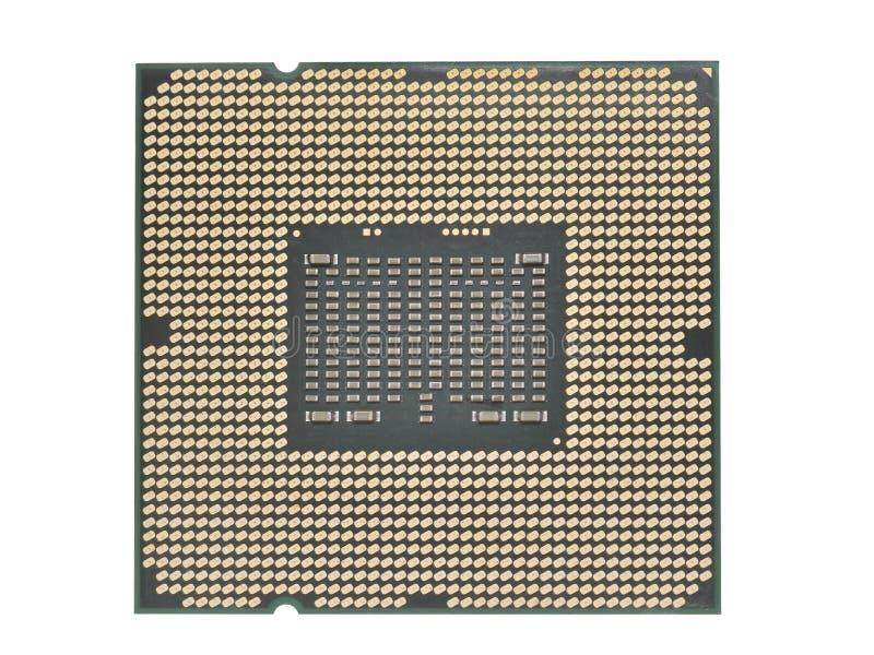 Cierre del procesador de la CPU para arriba de los contactos aislados en un fondo blanco imagen de archivo libre de regalías
