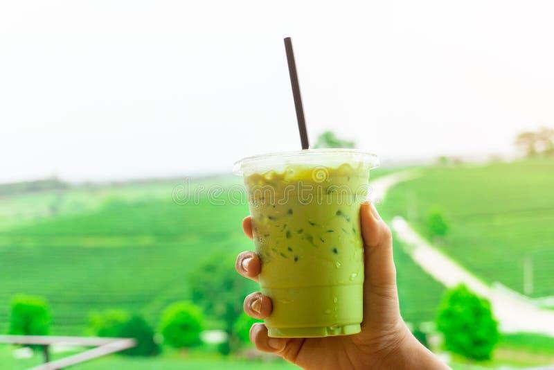 Cierre encima de la mano asiática joven de la mujer que sostiene la taza plástica para llevar de té verde helado delicioso o de m imagen de archivo