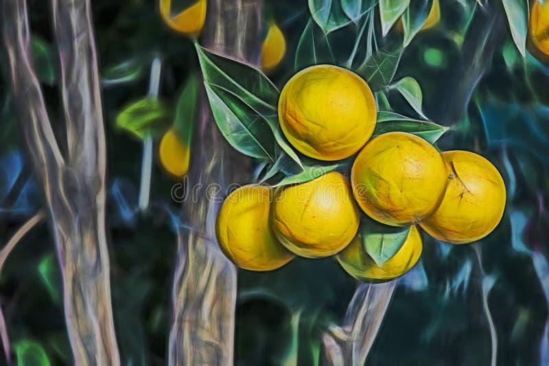 Cierre encima de las frutas anaranjadas en ramas de árbol stock de ilustración
