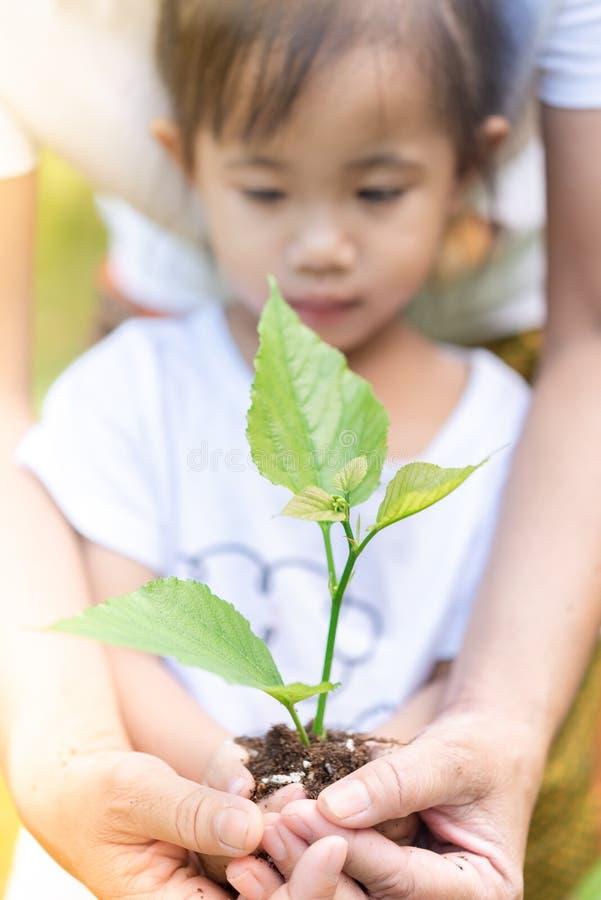 Cierre encima de las manos asiáticas de la muchacha y de la madre que sostienen la pequeña planta para prepararse para la plantac imágenes de archivo libres de regalías