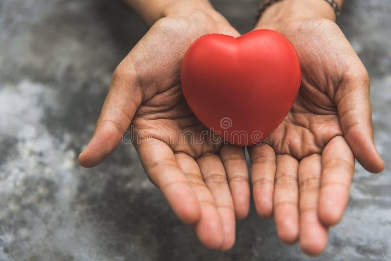 Cierre encima de las manos femeninas que dan el coraz?n rojo como donante de coraz?n D?a de San Valent?n del concepto del amor Ca foto de archivo libre de regalías