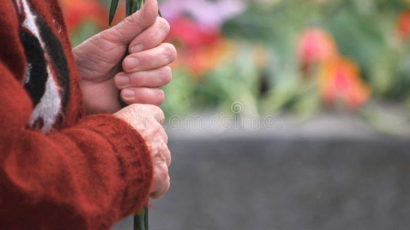 Cierre encima de las manos de la mujer mayor, vista lateral fotos de archivo libres de regalías