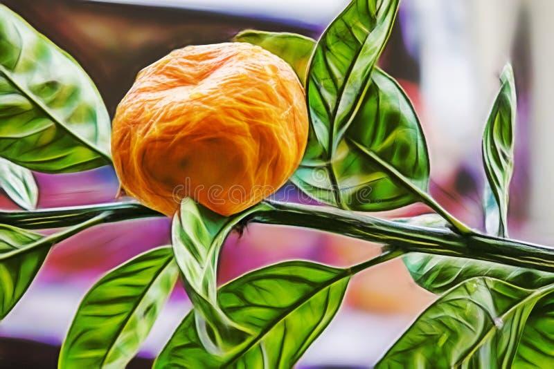 Cierre encima del árbol y de las frutas de mandarín con las hojas verdes ilustración del vector