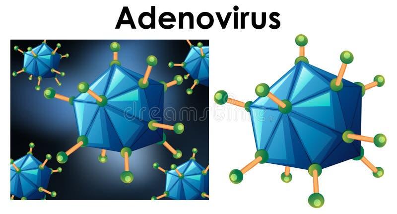 Cierre encima del objeto aislado del adenovirus del nombre del virus libre illustration