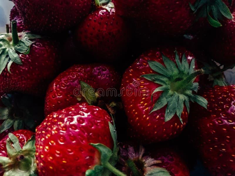 Cierre grande rojo rico de la fresa del fondo para arriba foto de archivo libre de regalías