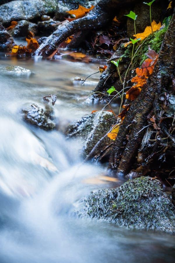 Cierre hermoso del detalle para arriba del río suave del satén liso sedoso que fluye en colores selectivos vivos de la caída del  foto de archivo libre de regalías