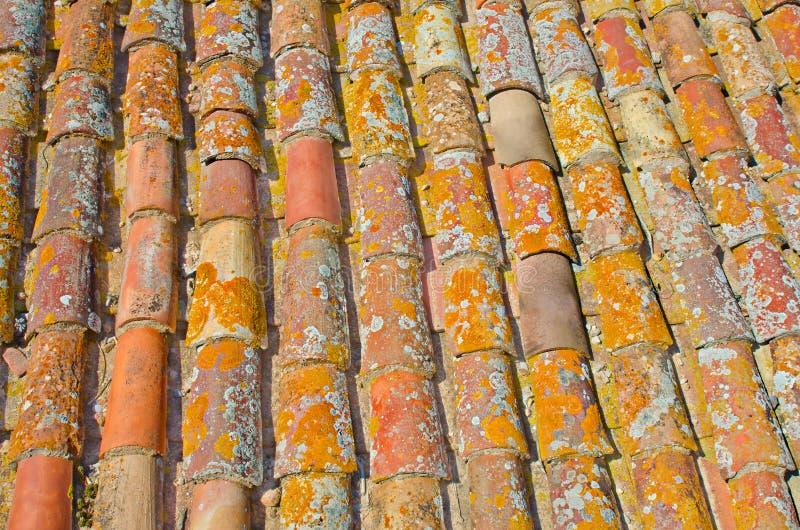 Cierre para arriba de la teja roja de la textura del tejado del viejo moho Fondo de la configuración fotografía de archivo