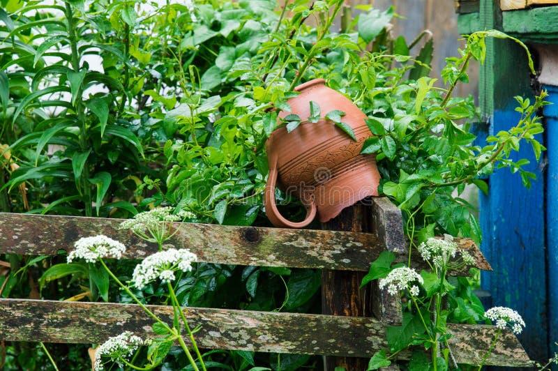 Cierre para arriba Jarro de la arcilla que cuelga para secarse en una cerca de madera rústica Patio del pueblo, sumergido en el f fotos de archivo libres de regalías
