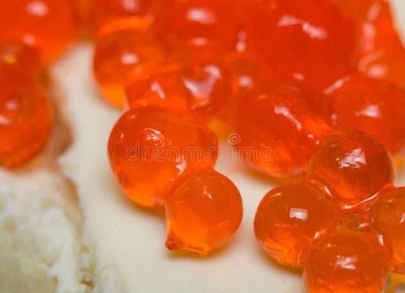 Cierre rojo del caviar para arriba imagenes de archivo