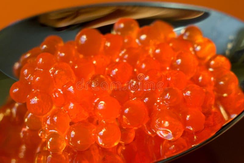 Cierre rojo del caviar para arriba imagen de archivo