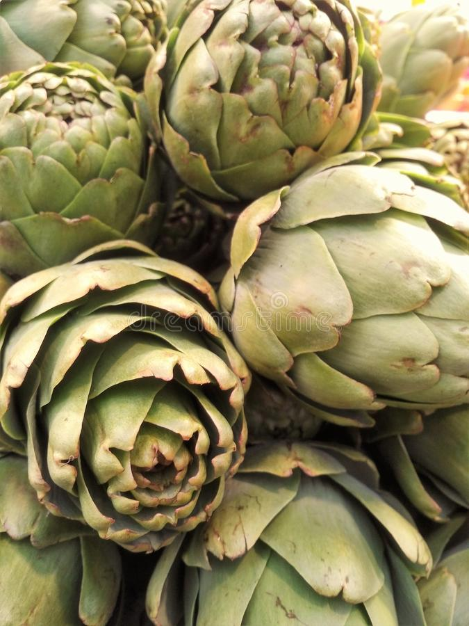 Cierre verde de la alcachofa para arriba fotos de archivo