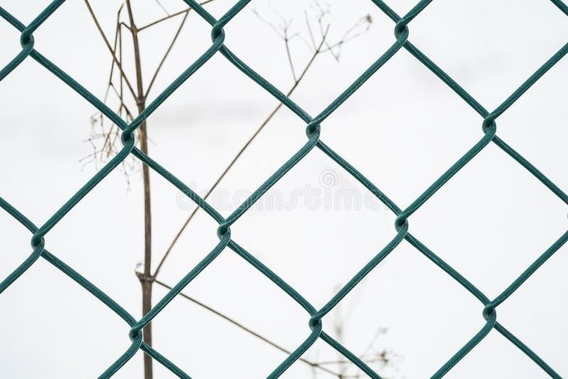Cierre verde de la cerca del metal para arriba foto de archivo