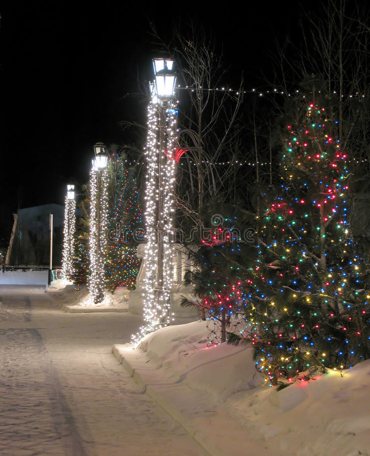 Cierre vestido del árbol de navidad para arriba en la calle. foto de archivo libre de regalías