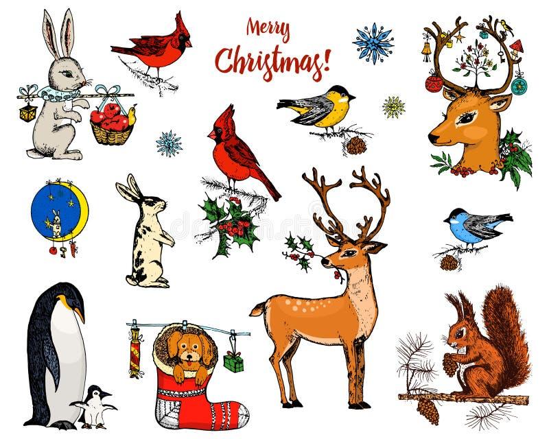Ciervos, ardilla y animales de cuernos de la Navidad Pingüino del Año Nuevo y cardenal o tit del pájaro en las vacaciones de invi libre illustration