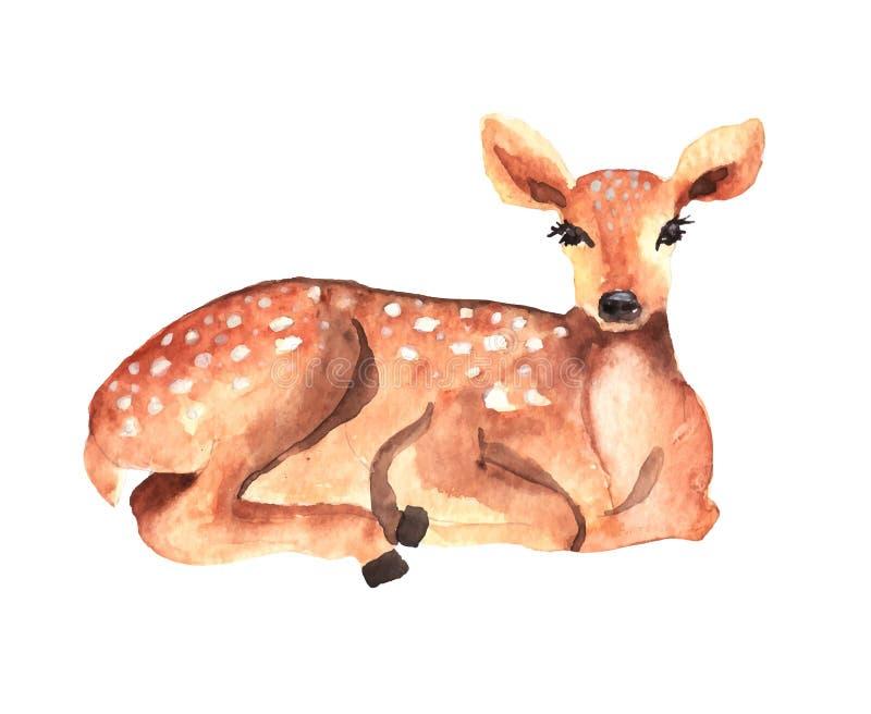 Ciervos de la acuarela ilustración del vector