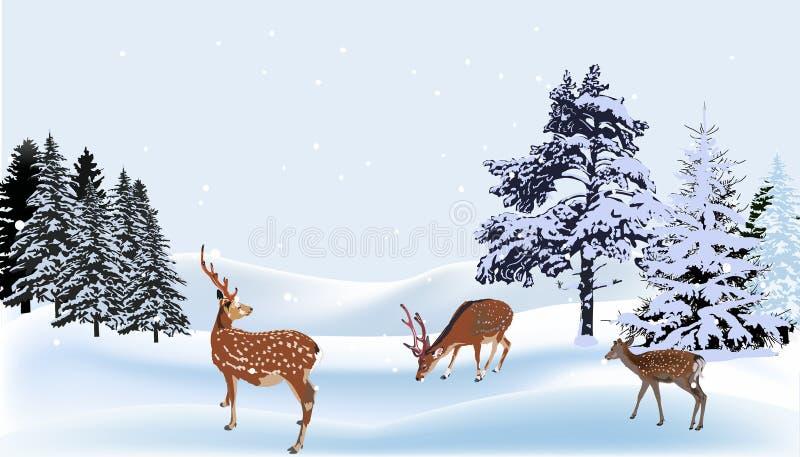 Ciervos del árbol bajo nevadas en bosque stock de ilustración