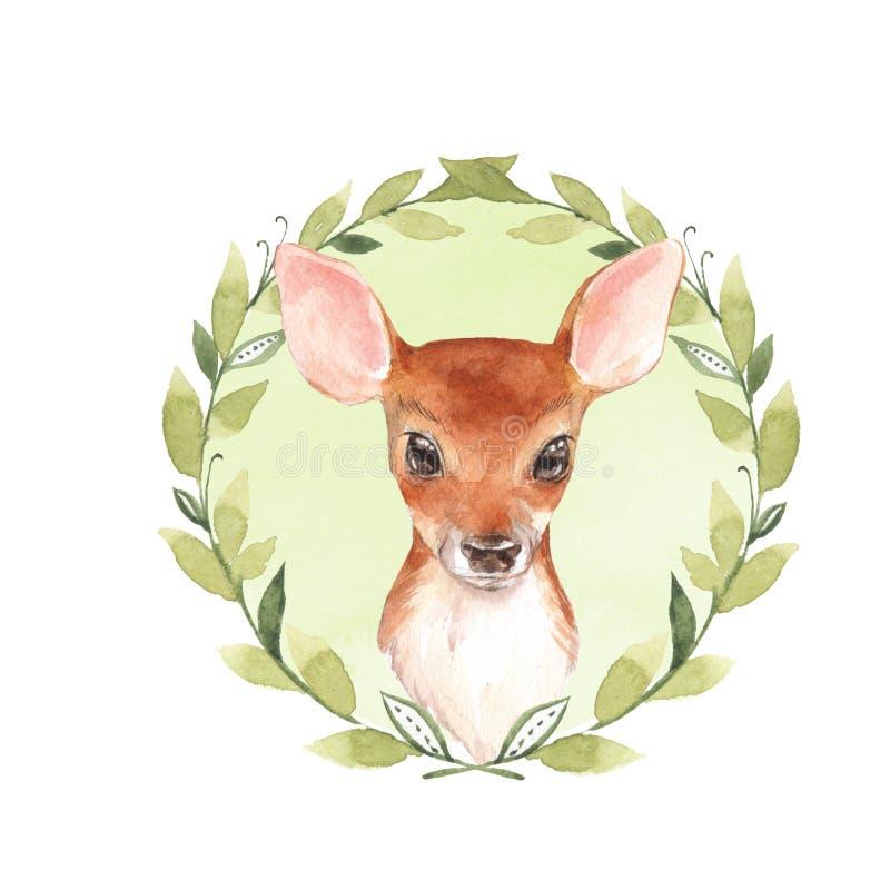 Ciervos del bebé Cervatillo lindo dibujado mano 2 stock de ilustración