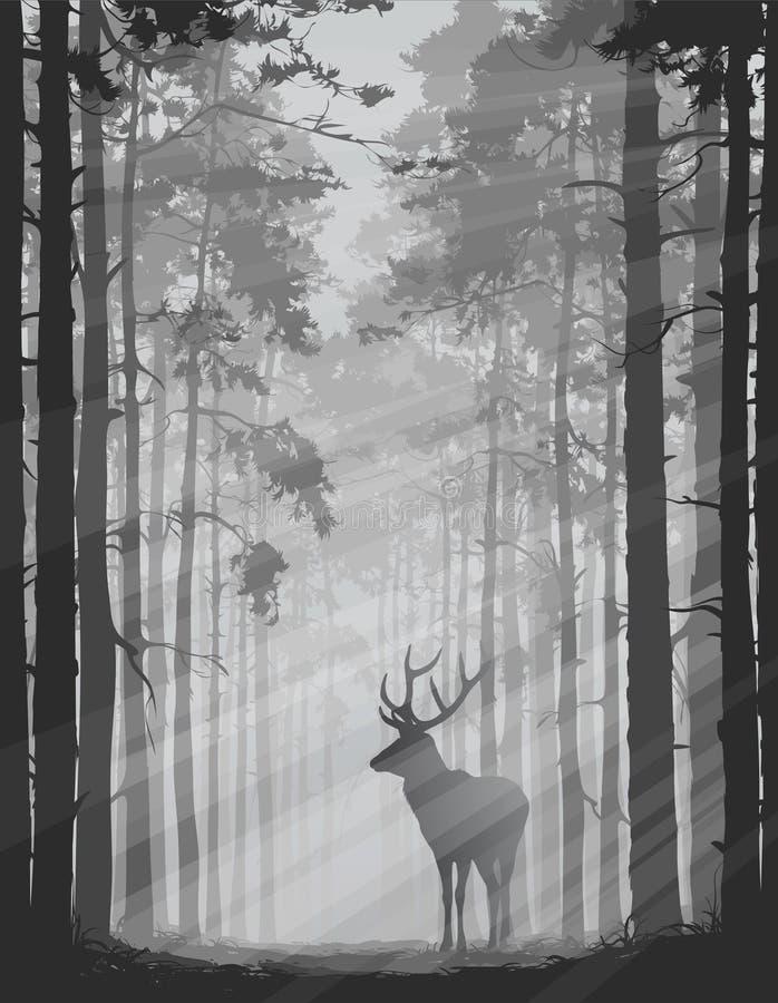 Ciervos en el bosque ilustración del vector