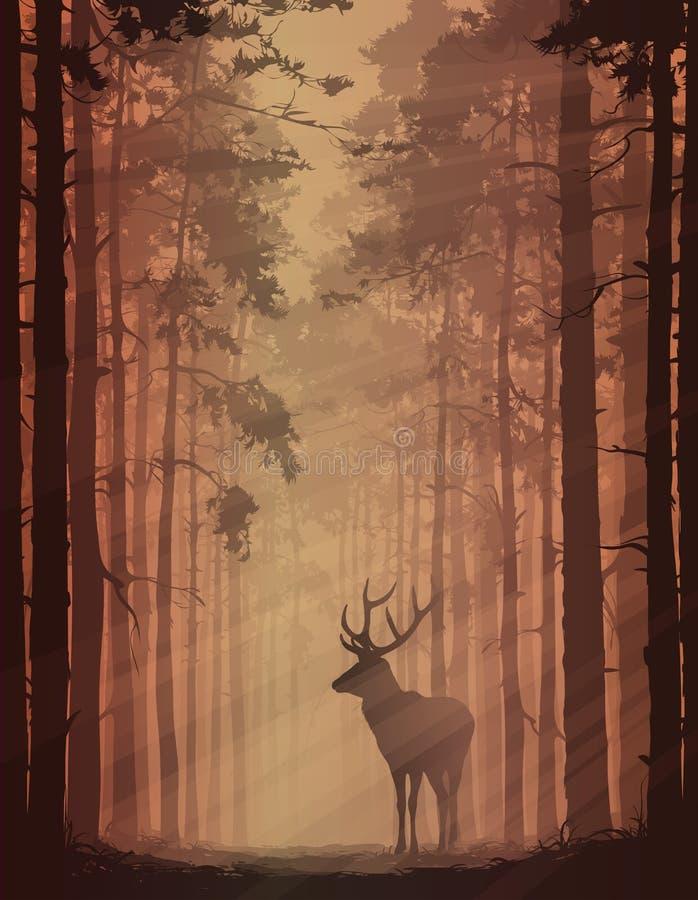 Ciervos en el bosque stock de ilustración