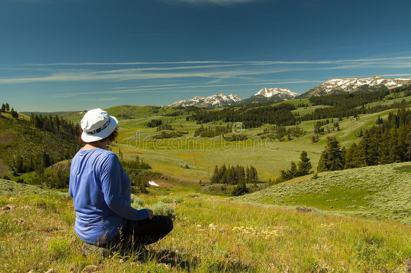 Cieszyć się Yellowstone widok zdjęcia stock