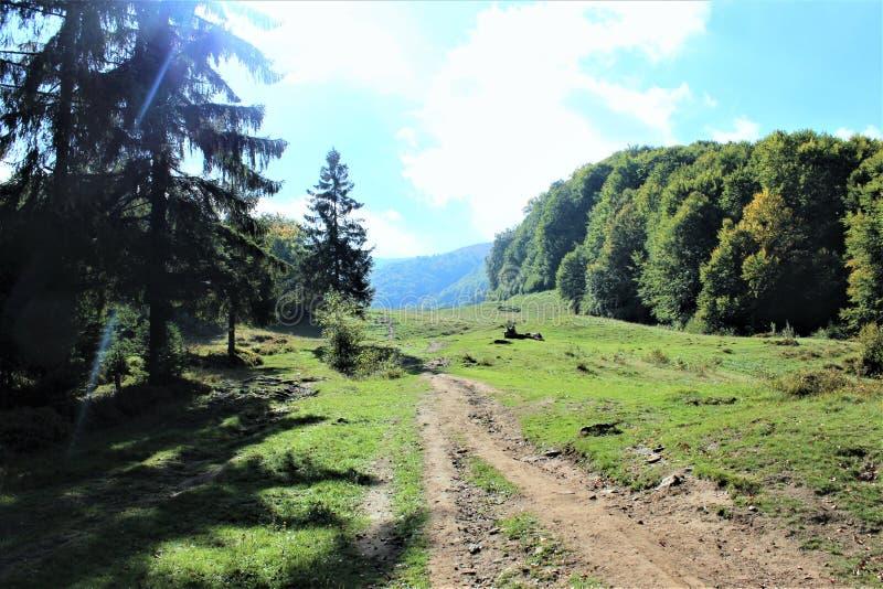 Cieszy się twój podróż z Carpathians górami, piękno wioska obraz royalty free