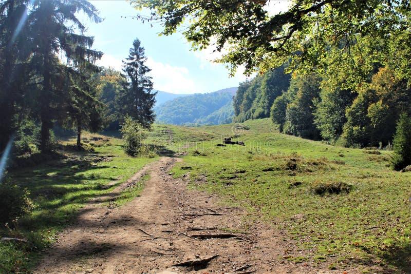 Cieszy się twój podróż z Carpathians górami, piękno wioska zdjęcia royalty free