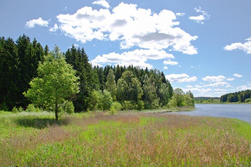 Cieux bleus au lac image stock