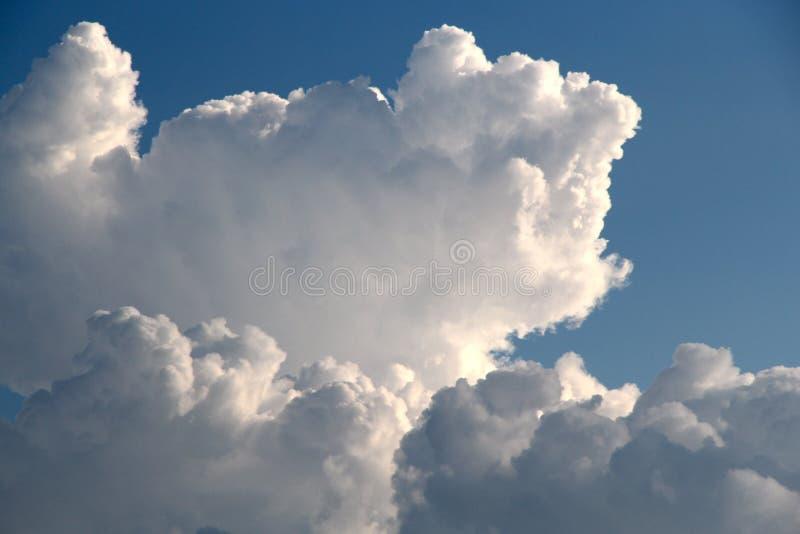 Cieux bleus de grand contraste pelucheux de nuage photographie stock