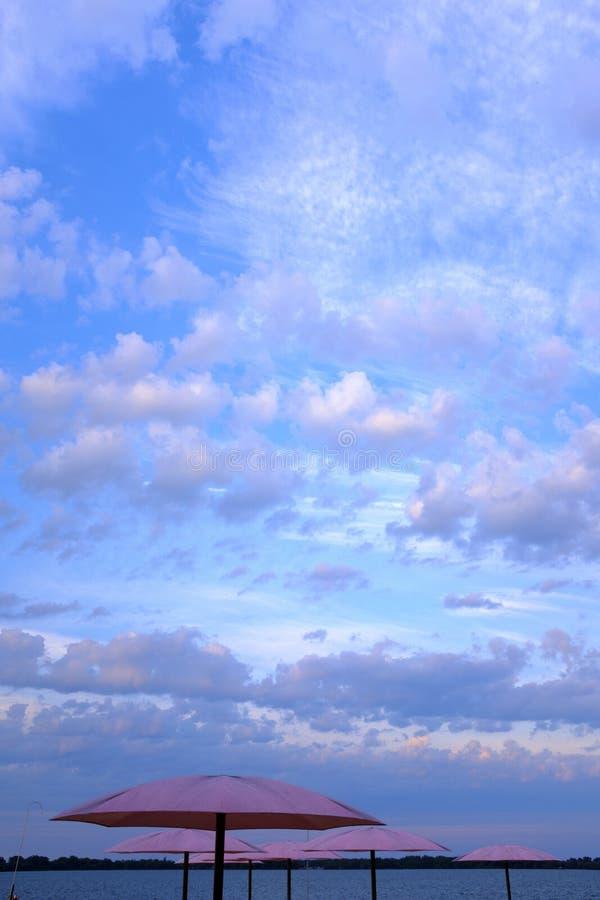 Cieux bleus et parapluies de plage roses photographie stock libre de droits
