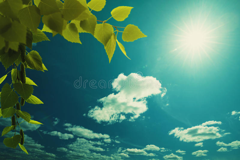 Cieux bleus larges image stock