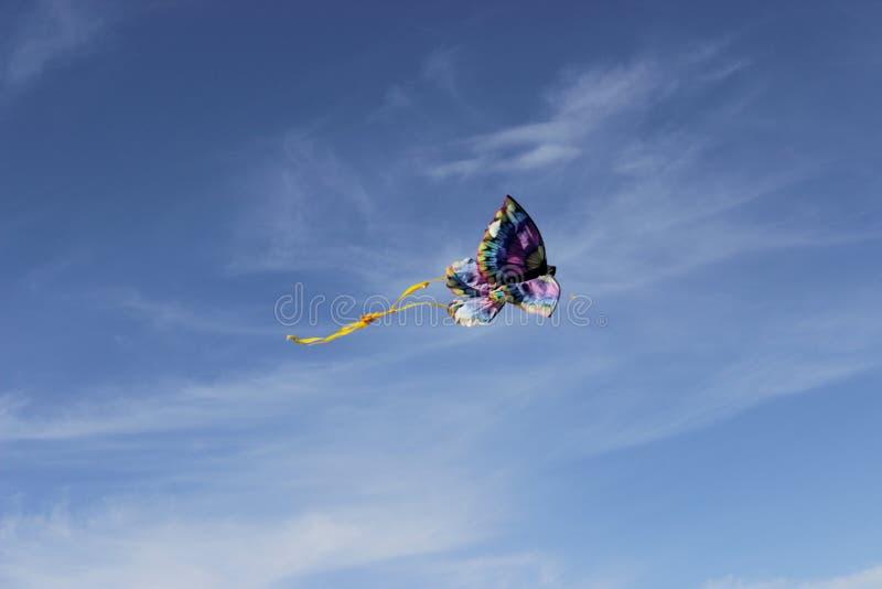 Cieux de cerf-volant photographie stock