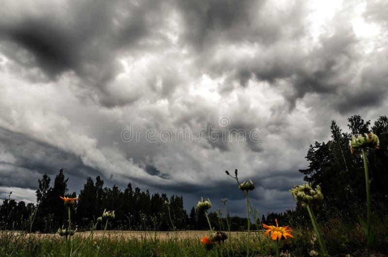 Cieux orageux au-dessus d'un champ photographie stock