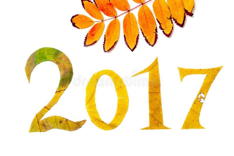 2017 cifre hanno scolpito dalle foglie di acero gialle su fondo bianco illustrazione vettoriale