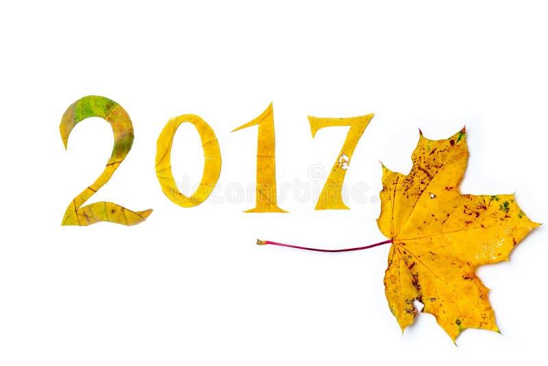 2017 cifre hanno scolpito dalle foglie di acero su un fondo bianco royalty illustrazione gratis