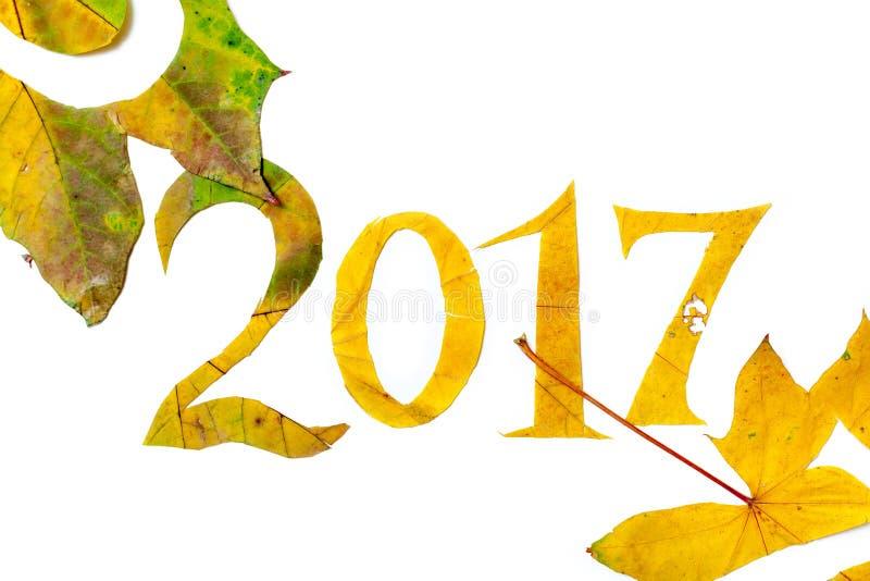 2017 cifre hanno scolpito dalle foglie di acero su un fondo bianco illustrazione di stock