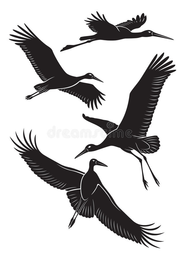 Cigüeña ilustración del vector